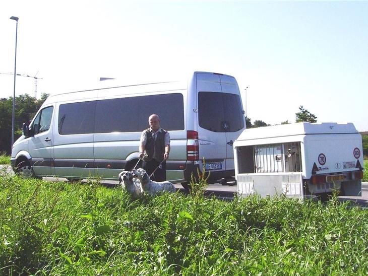 Noleggio minibus trasporto cani